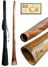 Didgeridoo aus Eukalyptus Tonhöhe CIS